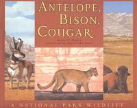 Antelope, Bison, Cougar